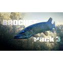 Pack III Brochets grands lacs (automne-hiver)